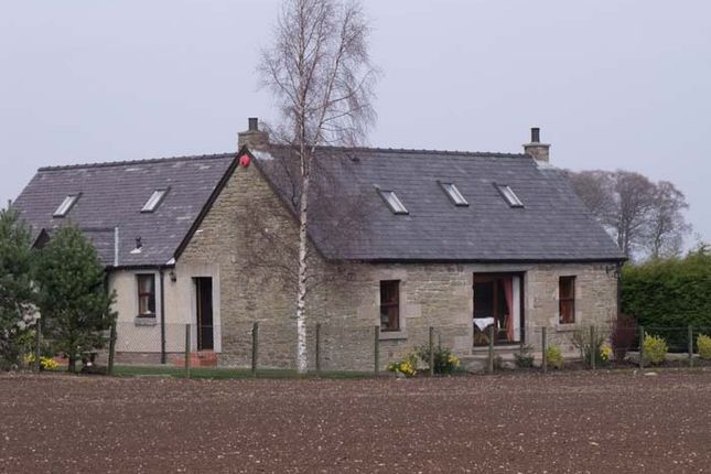 Thumbnail Detached house to rent in Forfar
