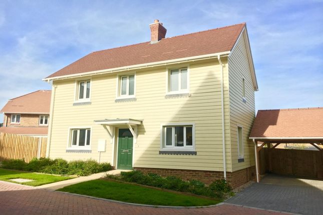 Thumbnail Property for sale in Peacocke Way, Rye