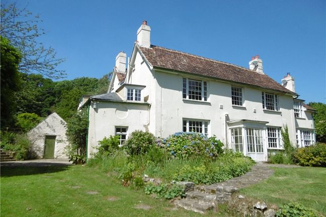 Thumbnail Semi-detached house to rent in Charmouth, Bridport