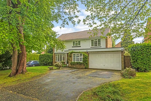 Thumbnail Detached house for sale in Abbots Lane, Kenley