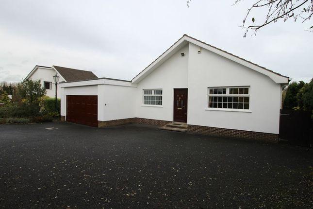 Thumbnail Bungalow to rent in Hillcourt, Hillsborough