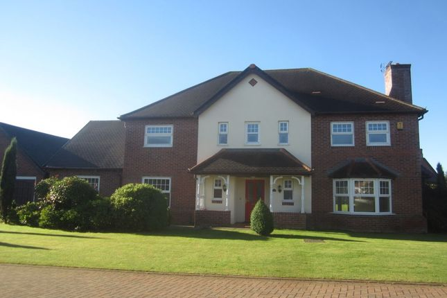 Thumbnail Detached house for sale in Springwater Drive, Crewe