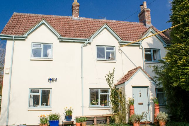 Thumbnail Detached house for sale in Church Street, Maiden Bradley, Warminster