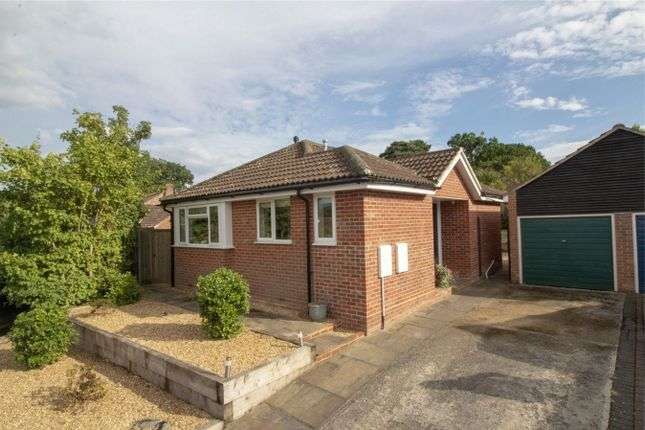 Thumbnail Detached bungalow for sale in Earlsbourne, Church Crookham, Fleet