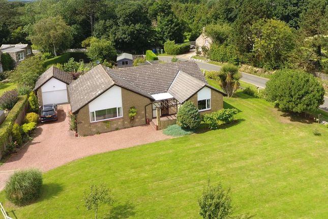 Thumbnail Bungalow for sale in Sandcroft, Croft Place, Newton By The Sea
