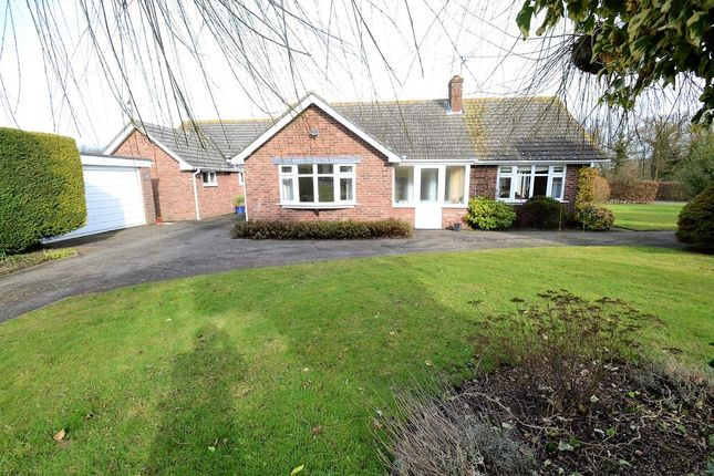 Thumbnail Detached bungalow for sale in Upsher Green, Great Waldingfield, Sudbury