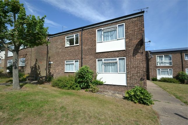 Thumbnail Flat to rent in Thorpe Walk, Colchester