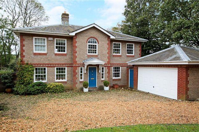 Thumbnail Detached house for sale in Portman Place, Blandford Forum
