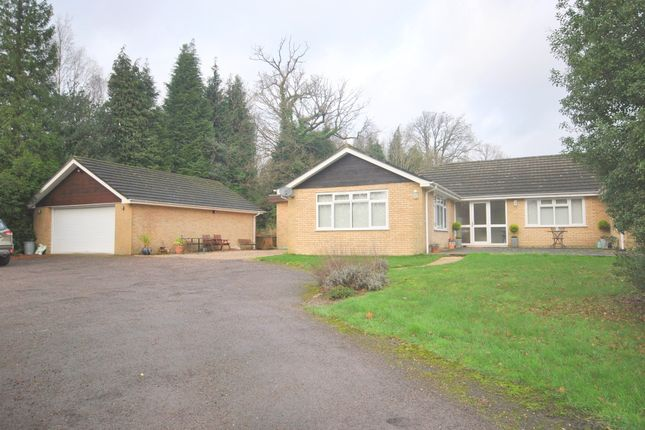 Thumbnail Detached bungalow to rent in The Approach, Dormans Park, East Grinstead