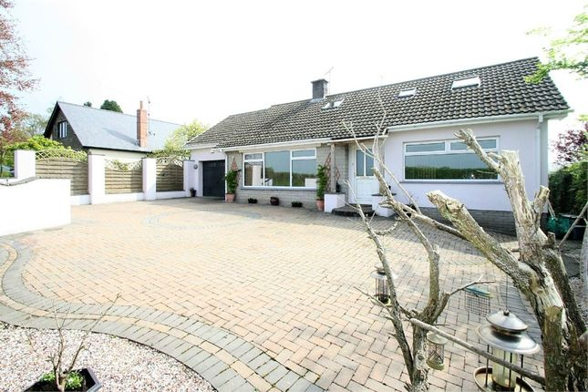 Thumbnail Detached bungalow for sale in -, Bryngwyn, Raglan, Usk, Monmouthshire