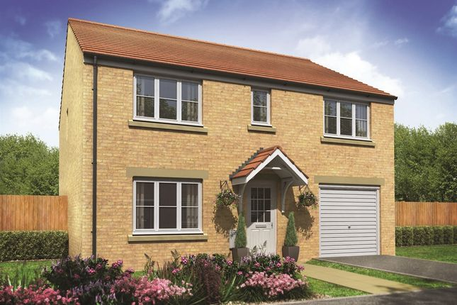 """Thumbnail Detached house for sale in """"The Tiverton"""" at Lime Avenue, Oulton, Lowestoft"""