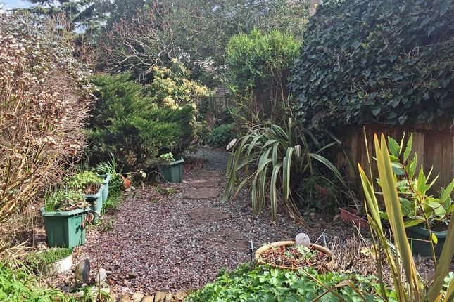 Thumbnail Terraced house for sale in Northbrook Road, Worthing, West Sussex