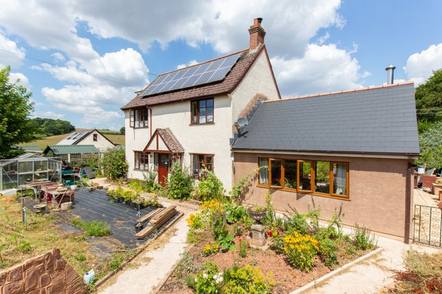 Thumbnail Detached house for sale in West Lodge Cross, Crediton