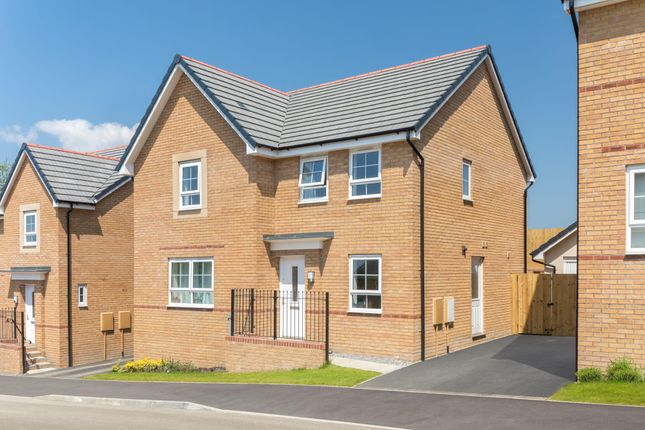 """Thumbnail 4 bedroom detached house for sale in """"Radleigh"""" at Red Lodge Link Road, Red Lodge, Bury St. Edmunds"""