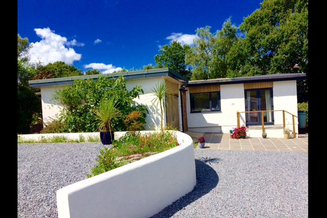 Thumbnail Bungalow to rent in Droridge, Dartington, Totnes