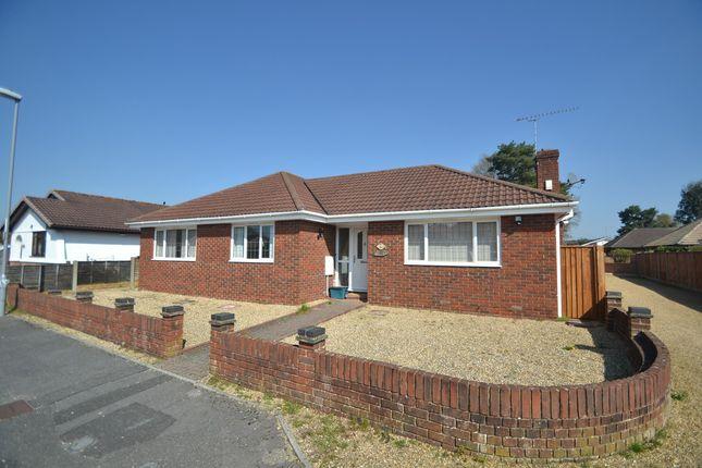 Thumbnail Detached bungalow to rent in Rowan Drive, Verwood
