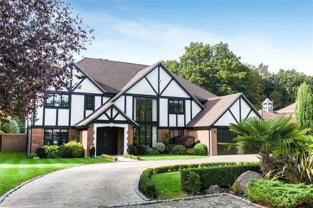 Thumbnail Detached house for sale in Birch Mead, Farnborough Park
