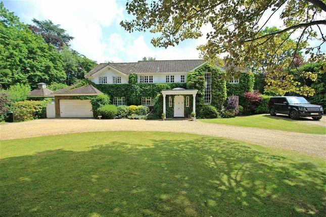 Thumbnail Detached house for sale in Harmer Green Lane, Welwyn, Welwyn
