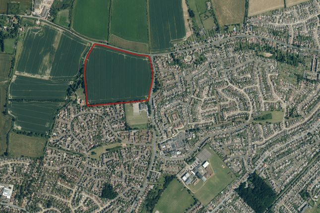 Thumbnail Land for sale in Honywood Way, Kirby Cross, Frinton-On-Sea