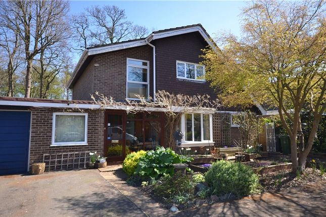 Thumbnail Detached house for sale in Kendal Grove, Camberley, Surrey