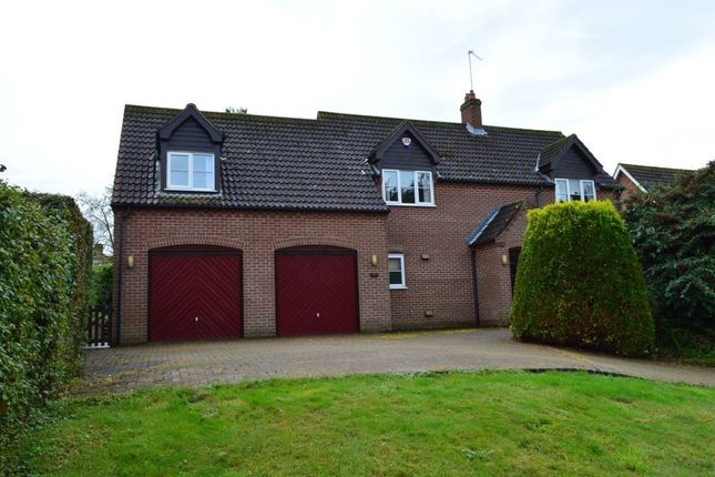 Thumbnail Property to rent in Lower Street, Salhouse, Norwich