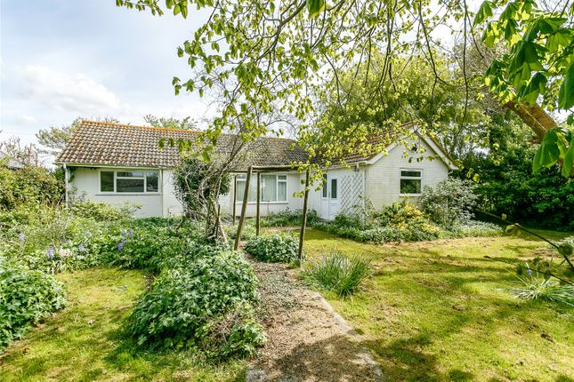 Thumbnail Bungalow for sale in Mill Lane, Sidlesham, Chichester, West Sussex