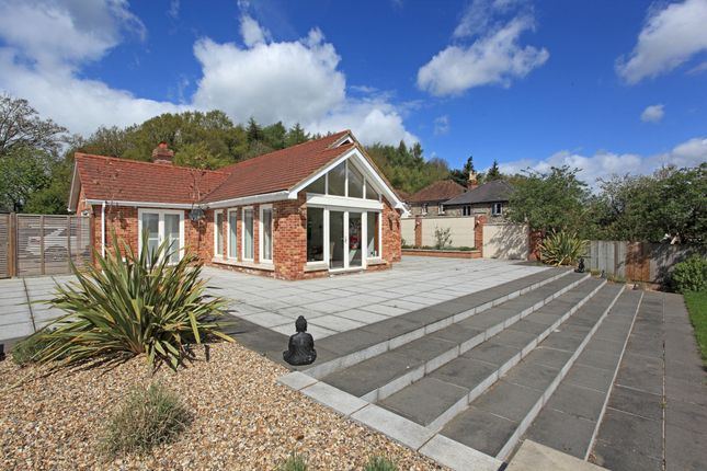 Thumbnail Bungalow to rent in Gravesend Road, Wrotham, Kent