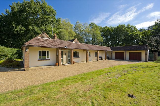 Thumbnail Detached house for sale in Lucas Green Road, West End, Woking, Surrey