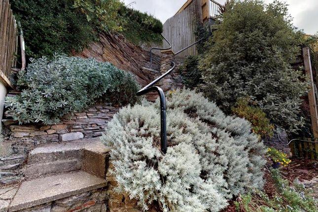 Garden of Mount Pleasant Road, Brixham, Devon TQ5