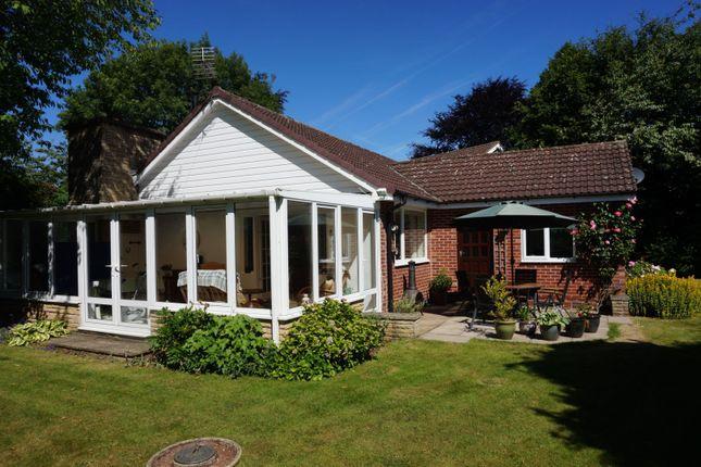 Thumbnail Detached house for sale in Common Road, Thorpe Salvin