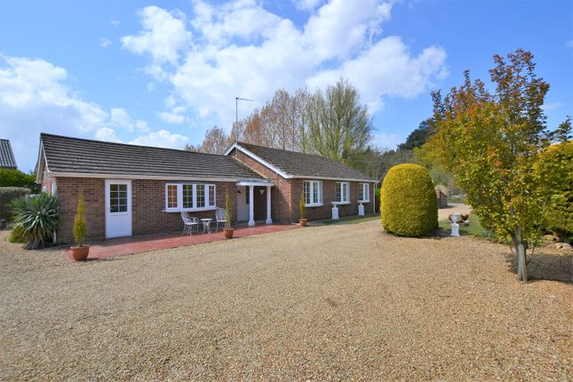4 bed detached bungalow for sale in Common Road, Snettisham, King's Lynn PE31