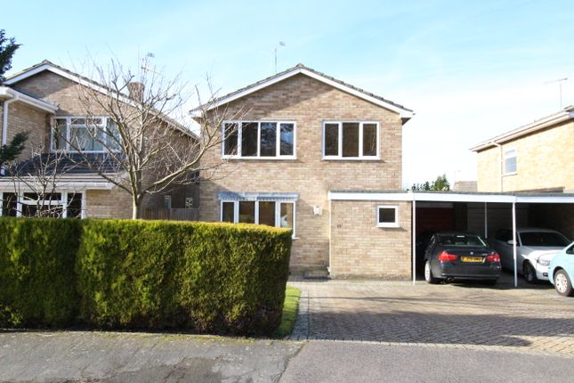 Thumbnail Link-detached house to rent in Bayfield, Frimley
