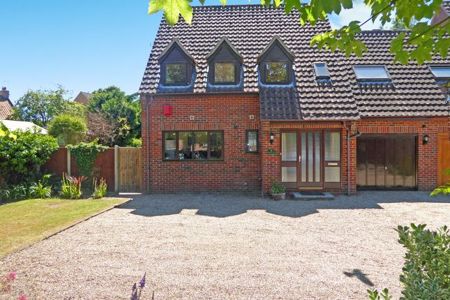 Thumbnail Link-detached house for sale in The Street, Thurlton, Norwich