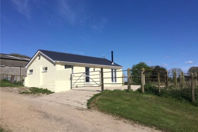 Thumbnail Detached bungalow to rent in Winterborne Muston, Blandford Forum, Dorset