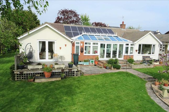 Thumbnail Detached bungalow for sale in Cherry Trees, Linton, Ross-On-Wye