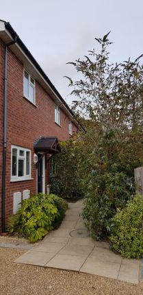 Thumbnail End terrace house to rent in Holly Hedge Lane, Poole