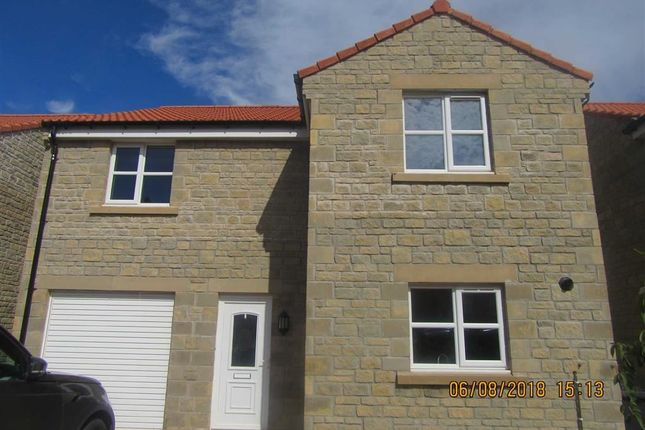 Thumbnail Detached house to rent in Cherry Tree Drive, Tweedmouth, Berwick-Upon-Tweed