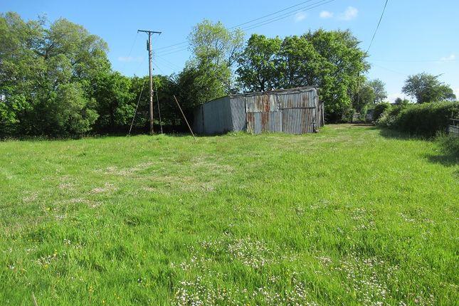 Site 1 of Dolton, Winkleigh, Devon EX19