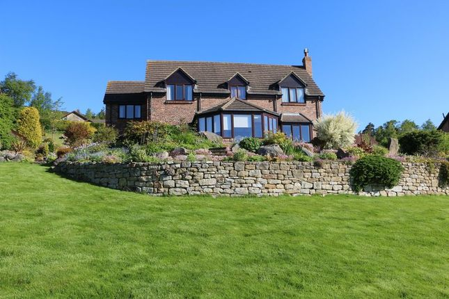 Thumbnail Detached house for sale in Blaeberry Hill, Rothbury, Morpeth