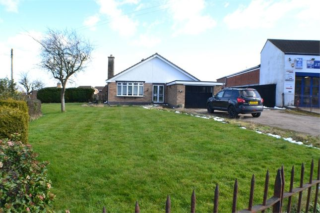 Thumbnail Detached bungalow for sale in Lutterworth Road, Burbage, Leicestershire