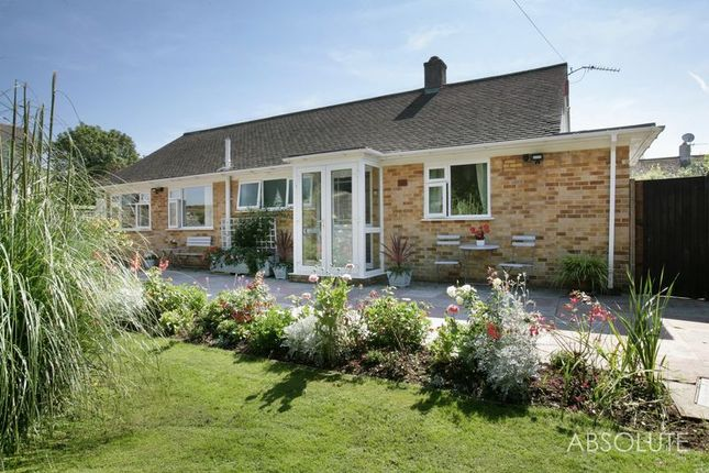 Thumbnail Bungalow for sale in Thurlow Road, Torquay
