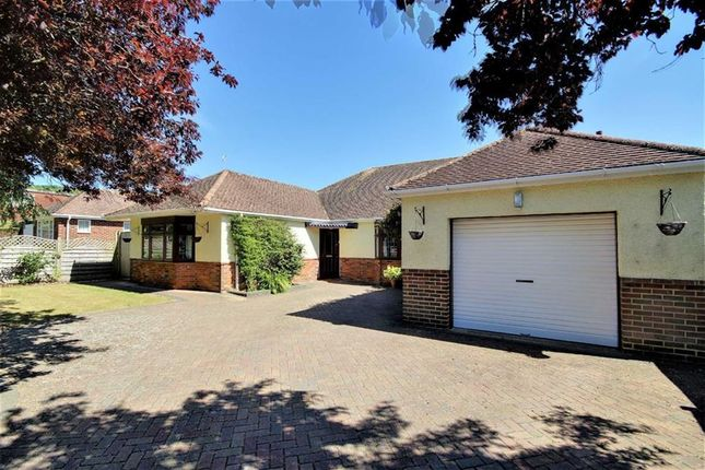 Thumbnail Detached house for sale in Central Avenue, Findon Valley, Worthing, West Sussex
