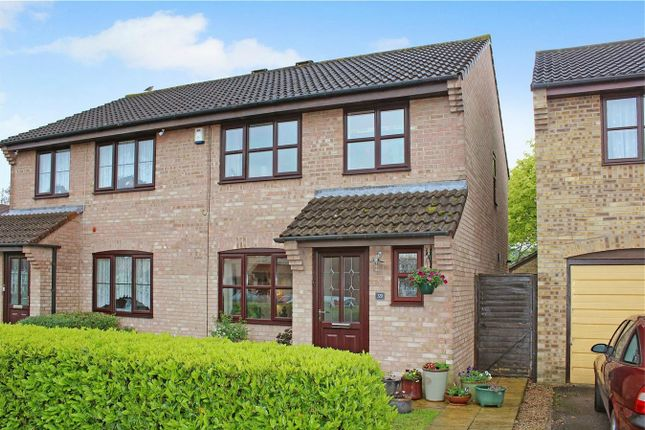 Thumbnail Semi-detached house for sale in Redlake Drive, Taunton, Somerset