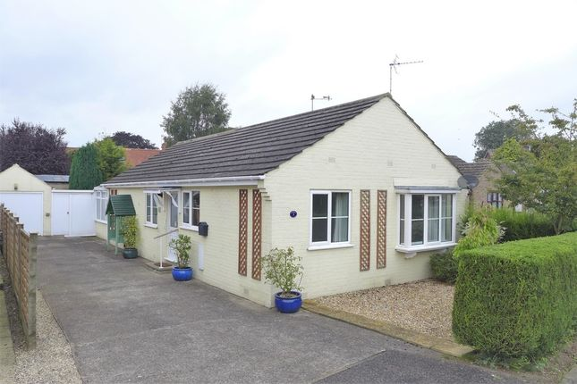 Thumbnail Detached bungalow to rent in Carr Close, Rainton, Thirsk