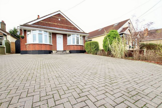 Thumbnail Detached bungalow for sale in Skitts Hill, Braintree, Essex
