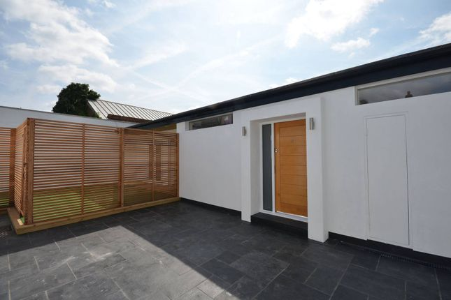 Thumbnail Bungalow to rent in Haydons Road, Wimbledon