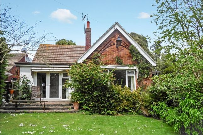 Thumbnail Detached bungalow for sale in Bourne Road, Colchester