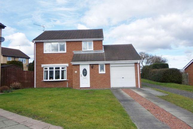 Thumbnail Detached house for sale in Ashtree Drive, Bedlington