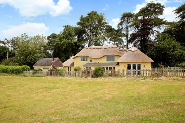 Thumbnail Cottage for sale in Pidney, Hazelbury Bryan, Sturminster Newton