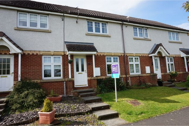 Thumbnail Terraced house to rent in Union Place, Falkirk